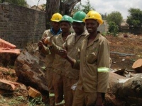 professional-tree-felling-07